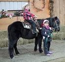Double D A B Pony Rides